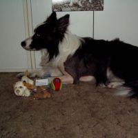 14.5.2008
